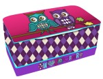 Owl themed toy box for kids