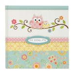 Owl Embellished Photo Journal Baby Book