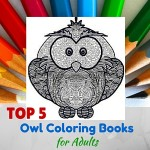 Top 5 Owl Coloring Books for Adults